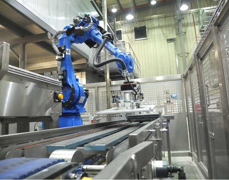 Robotic Lidders